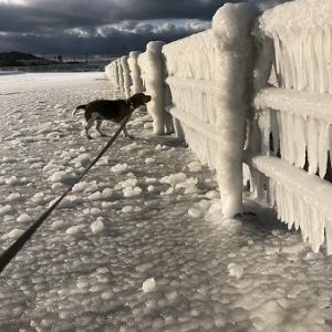 冬の造形・・波しぶきの作ったもの。
