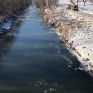 こつぶ・・雪道散歩2020年1月中旬。