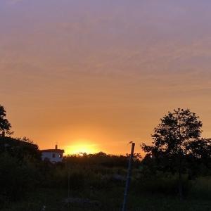 昨日の夕日がきれいだった。