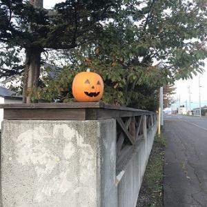 こつぶ・・晩秋の散歩とハロウィン。