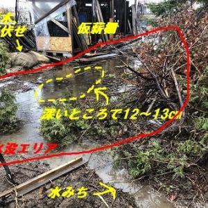 長雨の排水対策! 榾木がやばい!