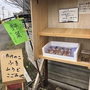 2021年・・無人野菜販売始まりました。
