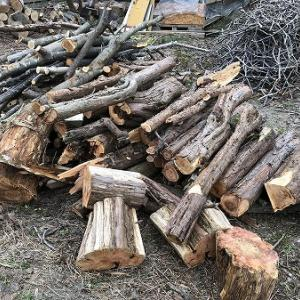 薪作り・・針葉樹乾燥丸太がもう少しで・・。