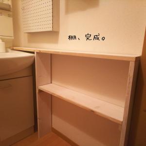 【DIY】洗面所の収納を考える。