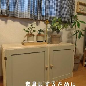 【DIY】棚から家具にするためにしたこと