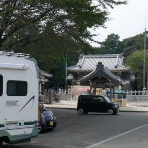 手水舎の花が綺麗な金井神社へ