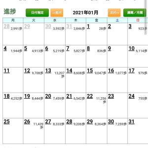 2月の万歩計(健康マイレージ)