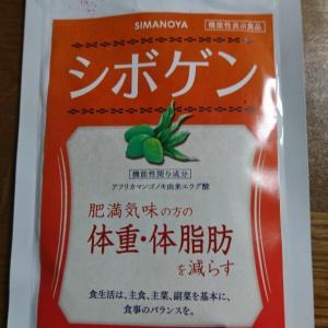 モニター報告★ダイエットサプリ『シボゲン』