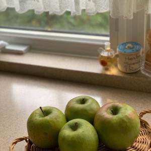 ドイツのお菓子〜Apfel-Zimtkchen〜
