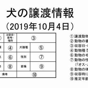 茨城センター 犬の譲渡情報(2019年10月) ※2019/10/4更新