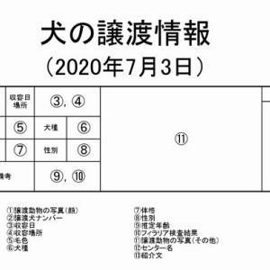 茨城センター 犬の譲渡情報(2020年7月) ※2020/7/3更新