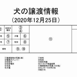 茨城センター 犬の譲渡情報(2021年1月) ※2020/12/25更新