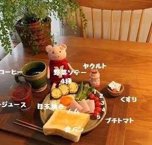 おはーーっ(*´▽`*)
