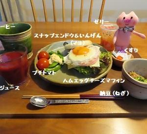 おはよう(^o^)