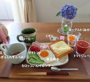 おはようごっざいます(^。^)