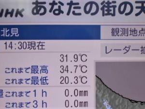 北海道も暑い