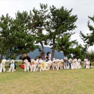 琵琶湖でオフ会キャンプしました(*^_^*)