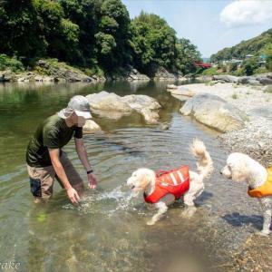 またまた奈良吉野川で川遊び(*^_^*)
