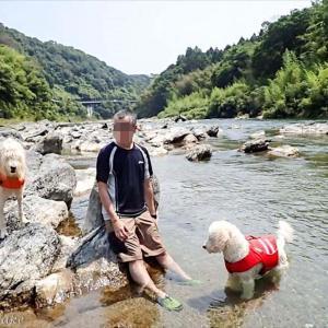 奈良県五条の吉野川で川遊び(*^_^*)