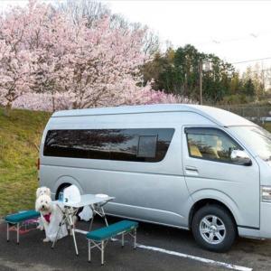 山の公園で花見ミニオフ会(*^^*) 番外編 RVパーク泊