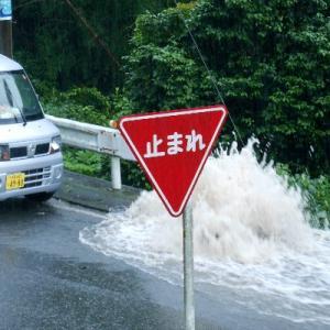 河津の梅雨