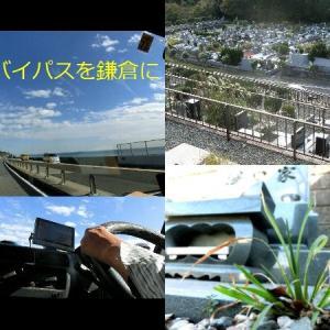 ひねくれ・ニュース・ウォッチ3