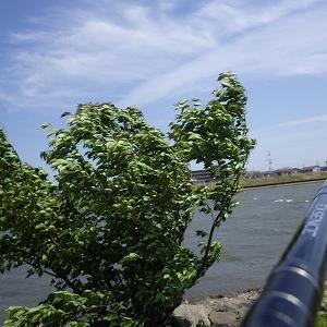 4月26日昼 爆風の旧江戸、、の巻