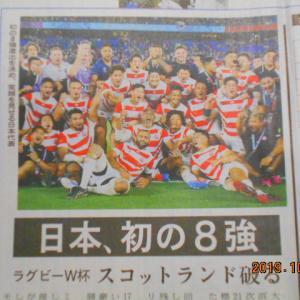 「ラグビーワールドカップ日本代表1次リーグ全勝。初の決勝トーナメント進出ベスト8入り」S6440