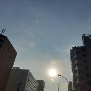 [2020年8月3日 7:00 月曜日 晴れ~夏空、夏色~夏らしい一日。」S7206
