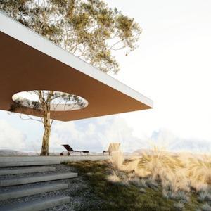 砂漠の村/若き建築家の死とユーカリプタス・グランディス