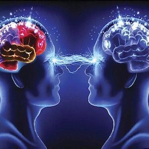 知のチャンチキおけさ、知のムニュエ、知のアントレ、知のデセール/知性? 知識? 教養? 学識? それってうめえのか?