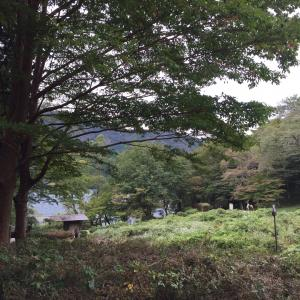 箱根九頭龍神社参り