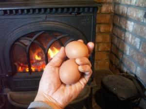 薪ストーブで温泉卵を作ってみた