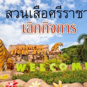 タイ東部の動物園「シラチャータイガーズー」閉園、新型コロナで打撃