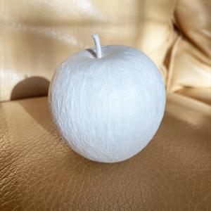ペーパーナプキンでリンゴ!