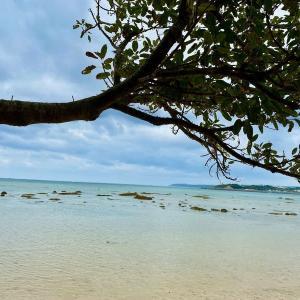 海辺の茶屋