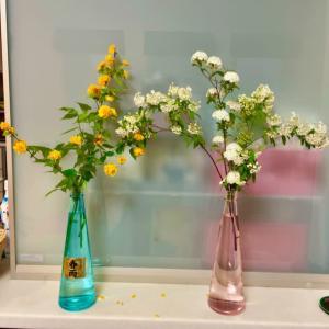 春雨の三角瓶