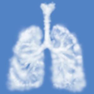 呼吸が貴方の在り方や人生さえも左右する