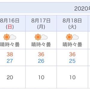 西日本の暑い夏にもう慣れた