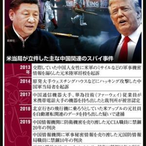中国の専門家ら「コウモリがウイルスの発生源」 トランプ大統領「その地域にコウモリはいないし、売られてもいなかった」