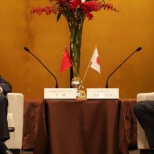 【重要・#静岡県知事選  あさって!6月20日投票日】川勝知事「静岡県が一帯一路構想を積極的に推進する」と述べ、中国共産党新聞に公式に紹介されていた
