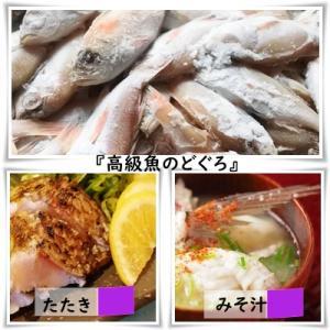 次の限定食材も高級魚!
