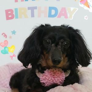 お誕生日おめでとうございます❤