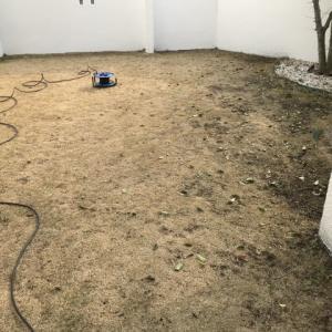 芝庭メンテナンス&T250SNへ換装 (20190209)