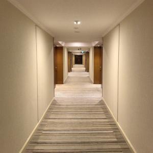 Hiltonシンガポール (20190613)
