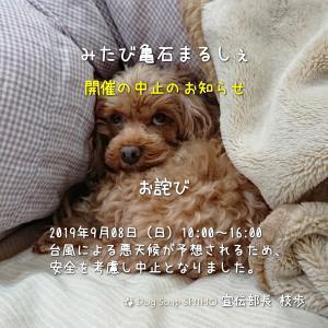 『みたび亀石まるしぇ』開催中止のお知らせ!