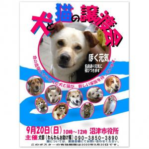 わんわんお助け隊 『犬&猫の譲渡会』