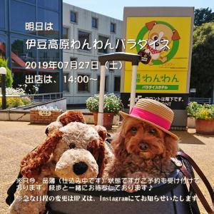 明日は『伊豆高原わんわんパラダイス』で出店します♪
