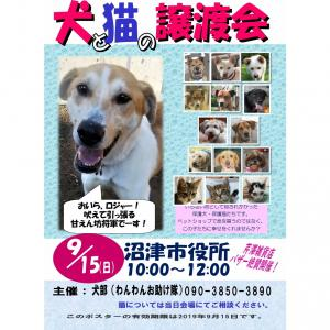 9月の『保護犬・保護猫譲渡会』のお知らせ♪