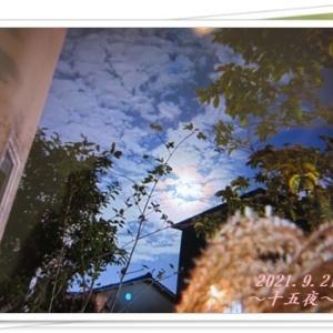 <雲の中でも思い出の一つ・・・^^♪>